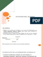 NOCIONES DEL ALGEBRA