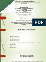 Tarea Fase 2_Planeación Del Desarrollo_Grupo_11