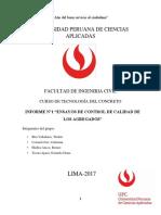 INFORME_1_AGREGADOS.docx
