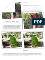 Animales la Aurora Guatemala
