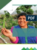 Guia-para-elaborar-proyectos.pdf