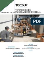 Mantenimiento Sistema de Refrigeracion y (2)