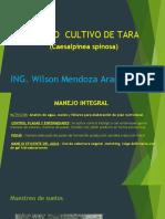 MANEJO INTENSIVO DE PLANTACIONES DE TARA CAESALPINEA SPINOSA EN EL SUR DEL PERU