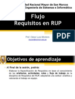 UNMSM as 10 DetalleRequisitosRUP