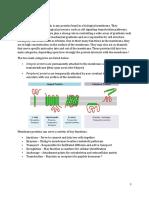 BIO201 Membrane Proteins.docx