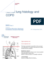 Normal Histology of the Lung and Pathophysiology of COPD (T Year)