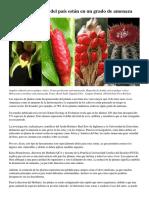 Ecuador Plant Extinctions - El Comercio 7 July 2019