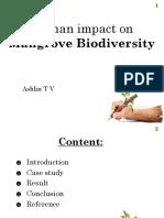 mangrve forest.pptx