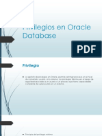 Privilegios BD ORACLE