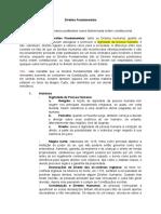 Caderno Direitos Fundamentais.docx