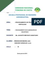 INFORME DE ENCURTIDOS.pdf