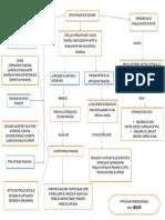 1. Evidenia-MAPA CONCEPTUAL.pdf