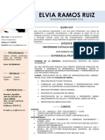 48-curriculum-vitae-calido.docx
