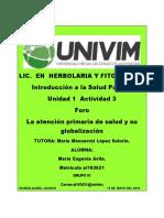 MEAvila_La atención primaria de salud y su globalización.-.docx