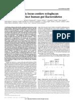 larsbrink2014.pdf