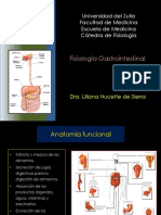 fisiologia gastrico