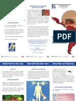 Triptico zika1.pdf