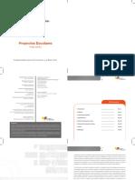 INSTRUCTIVO DE PROYECTOS.pdf