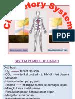 Sistema Sirkulatoria 2013