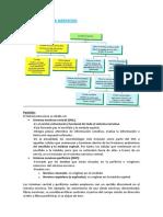 T.20.SistemaNervioso.docx