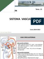 13. Sistema Vascular.pdf