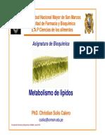 Bioquimica Clase 12 Metabolismo Lipidos