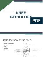 Knee Patho