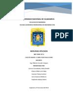 CUESTIONARIO DE EXPLOSIVOS GEO APLICADA (1).docx