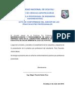 ACTA DE ASESOR.docx