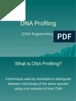 DNA Fingerprinting Powerpoint