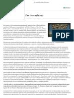 19 05 Turner Adair Em Defesa Das Tarifas de Carbono