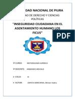 Inseguridad-Ciudadana (1).docx
