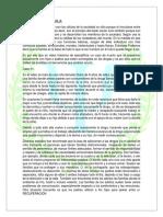 LA FUNCIÓN DE LA FAMILIA.docx