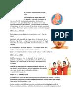 ETAPA PRENATAL Y 6 MAS.docx