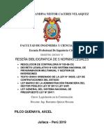 PILCO QUENAYA Axcel .docx