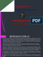 MINERALOGIA-OPTICA 1.pptx