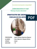 PROYECTO PIERO.docx