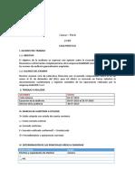 procedimientos de auditoria.docx