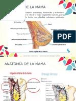 Patologías de La Glándula Mamaria