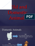 wild animals ppt for small kids