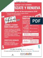 Reemplacamiento Edomex 2019 Guia Rapida