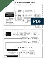 Flujograma  Del Proceso de Hábeas Corpus