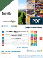 VII Reunión de la  Red Regional de Sistemas Públicos de Abastecimiento y Comercialización de Alimentos para América Latina y el Caribe.