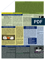 Boletín Psicología Positiva. Año 10 Nº 25