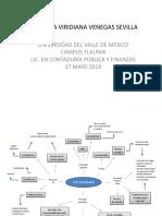 Mapa Mental Voluntariado_Andrea Venegas