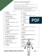 289808681-Prueba-Sistema-Oseo-y-Muscular.doc