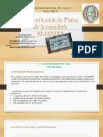 PLANTAS PPT FINAL saray.pptx