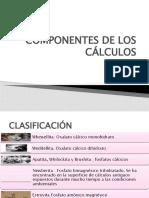 COMPONENTES DE LOS CÁLCULOS