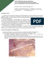 2008 El Bosque Petrificado de Negritos