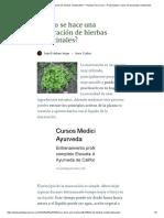 ¿Cómo Se Hace Una Maceración de Hierbas Medicinales_ – Plantas Para Curar – Propiedades y Usos de Las Plantas Medicinales